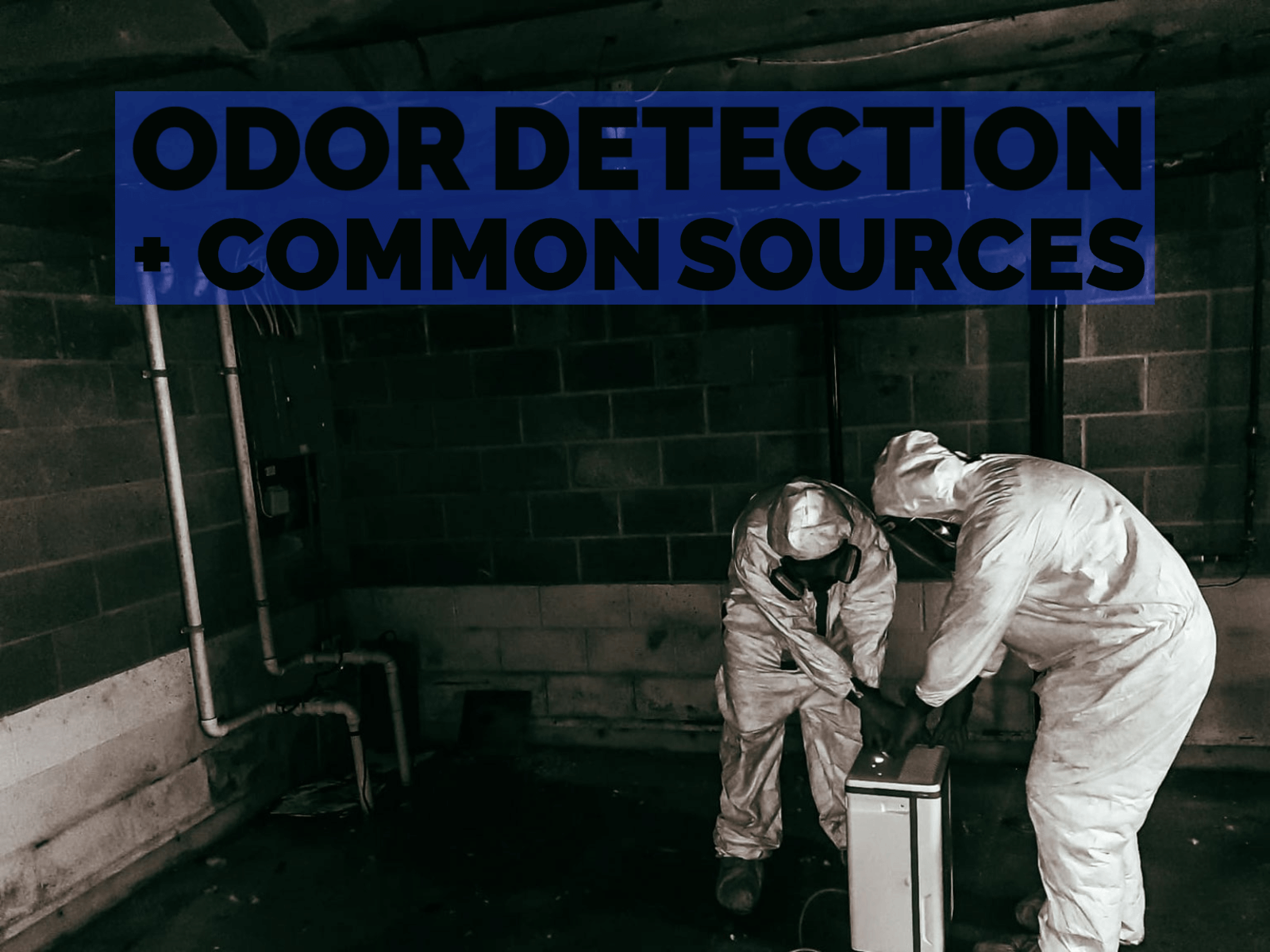 Effective Odor Detection and Common Sources of Odor